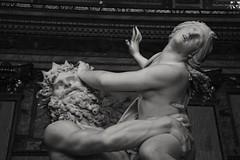 Ratto di Proserpina, Gian Lorenzo Bernini, Roma (martinatrotta) Tags: blackandwhite bw sculpture roma photo nikon marble bernini barocco proserpina galleriaborghese plutone rattodiproserpina