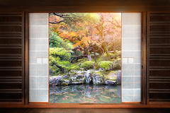 Japanese garden (Patrick Foto ;)) Tags: park old travel autumn red house fish plant flower building tree green tourism home window nature beautiful beauty japan wall architecture forest vintage garden asian outdoors temple japanese tokyo design leaf maple kyoto asia view background interior room traditional famous culture landmark jp zen round fancy koi meditation through concept copyspace kytoshi kytofu