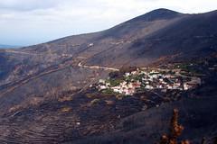 Serra do Aor | 2005 (Antnio Jos Rocha) Tags: portugal serra casas fogo aldeia queimada cinzas serradoaor incndioflorestal