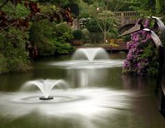 Dingle Gardens, Shrewsbury, Shropshire (PeskyMesky) Tags: park longexposure mist fountain canon garden pond shropshire pov shrewsbury pointofview le canoneos500d dinglegardens