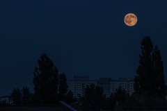 Am zwanzigsten Juni (Stephan No) Tags: roof moon berlin juni mond nacht stadt pentacon dach f4 lichtenberg neubau neubauten 200mm 2016 dcher pentacon200mmf4 junimond erdbeermond