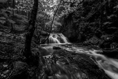 Waterfall Schliersee 8 bw (xdbooking) Tags: blackandwhite water forest river germany bayern bavaria waterfall wasserfall waterfalls schliersee josefstal xdarts