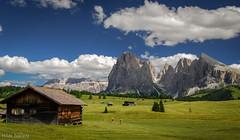 Seiser Alm Italy (Hilde Saelens) Tags: italy grden alps europe meadow alm dolomites dolomiti sdtirol altoadige valgardena dolomiten mountans plattkofel langkofel seiser seiseralm