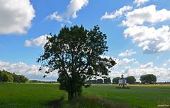 Landscape Ijsselvliedt (JaapCom) Tags: jaapcom wezep ijsselvliedt pigeon coop duiventil landscape landgoed landschaft clouds trees dutch holland paysbas netherlands natural
