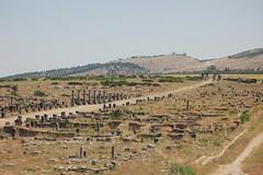 DSC_6260 (taytaytaytaytaytaytaytaytaylor) Tags: street ruins gate main maximus volubilis phoenician carthaginian decumanus tingis