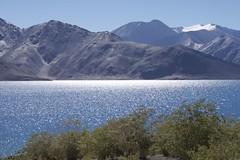 IMG_8422 (RLTgo.com) Tags: blue people brown mountains lakes places hills leh ladakh nubravalley pangong pangongtso sarchu manalileh darcha jispa foxtraveller lifemeinekbaar