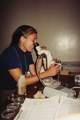 2000 612 Aquatic Entomology (Ohio Sea Grant and Stone Laboratory) Tags: summer portrait people college students vertical education day indoor greatlakes research osu microscope outreach putinbay ohiostateuniversity labwork viles centralclassroombuilding lakeerieislands gibraltarisland stonelaboratory ohioseagrant lisabrohl outdoorscienceclass stonelabstaff 612aquaticentomology