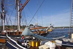 Hanse Sail 2013 (drloewe) Tags: meer boote balticsea rostock hansesail schiffe 2013 canoneos50d shipsboat