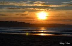 atardeciendo (Melany Martin) Tags: sol beach atardecer mar waves playa pajaros sombras