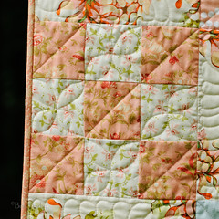 Peach 9-patch - quilting and binding detail (Huntspatch Quilts) Tags: quilt peach quilting binding figtree 9patch heatherbailey fmq n1308108311