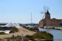 Salina - Sicilia 2013 (Dandelio) Tags: sea nature porto sicily palermo erice trapani marettimo
