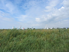 rietzeilen (zeedier) Tags: lake holland water dutch zeilen meer sailing wind sail dyke dijk riet noordholland eiland zeilboot zeilboten dewoude alkmaardermeer