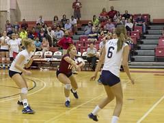 DJT_7139 (David J. Thomas) Tags: sports athletics volleyball arkansas scots batesville lyoncollege