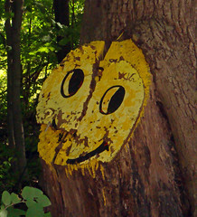 Have a nice day -- not so much anymore (Larry the Biker) Tags: tree smile oak michigan smiley oaktree mountvernon smileyface haveaniceday washingtontownship