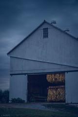 tobacco night (Jen MacNeill) Tags: blue night barn rural farm shed harvest amish bluehour tobacco drying jennifermacneilltraylor jmacneilltraylor jennifermacneill jennifermacneillphotography