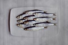 [fish texture] (RHiNO NEAL) Tags: food fish texture plate sprats rhinoneal