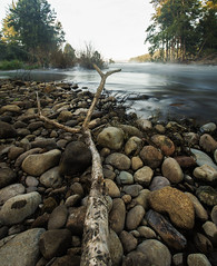 Sticks and stones (Sir Mashington the 27th) Tags: morning trees winter cold tree water vertical river landscape flow sticks rocks