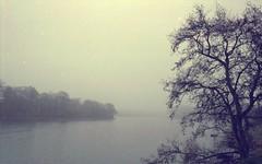 (Headcrabs) Tags: lake tree film water 35mm moss exposure dam bank double moldy billinge silhohette carmill