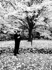 The Photographer (amee@work) Tags: minnesota october photographer minneapolis arboretum 2013