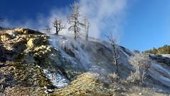 131026Yellowstone9434w (GeoJuice) Tags: usa geography wyoming geology hotspot geysers mammothhotsprings yellowstonenp tectonics earthe fumeroles geojuice