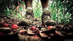Hiking shoes île de la Réunion (Zeeyolq Photography) Tags: shoe shoes hiking hike îledelaréunion