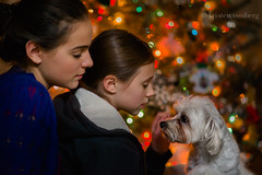 affection (KristenVB) Tags: christmas girls dog children bokeh christmaslights