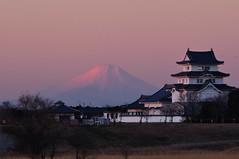 Distant view of Beni Fuji Dec/28/2013 6:53 (K.K.1048) Tags: fujisan  mtfuji