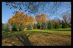 Memories of autumn (Zyla, K. alone) Tags: park autumn trees fall nature poland polska jesie beskidniski wysowa thebp justpentax pentaxart pentaxkr