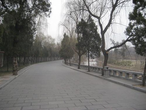 zhenshou 219