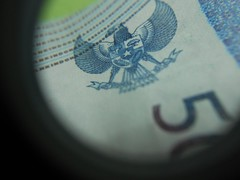 DSCN0352 [1600x1200] (siputlutju) Tags: macro tengu duit