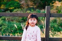 L1002748 (perahia) Tags: leica m noctilux yangmingshan 095 m240