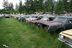 Wrecking Yard Cars and Trucks ('Cuda Brother Sam) Tags: rust junkyard wreckingyard projectcars autosalvage cudabrothers