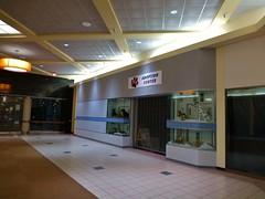 APL Adoption Center (Nicholas Eckhart) Tags: ohio usa retail america mall us oh stores apl 2014 ashtabula animaladoption adoptioncenter ashtabulatownesquare ashtabulamall