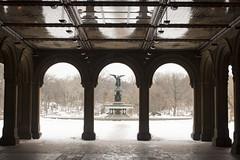 _MG_5252 (rebeccaplotnick) Tags: nyc newyorkcity winter snow newyork centralpark newyorknewyork winterinnyc snowincentralpark centralparksnow newyorkcityphotos rebeccaplotnick photosofny
