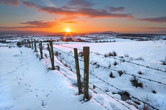 Sunrise in the snow (explored) (Getty listed) (Alan10eden) Tags: morning winter sky snow mountains cold ice sunrise canon fence landscape dawn early frost view january footprints wideangle hills barbedwire fields northernireland chilly posts 1022mm 1022 ulster orangeglow countyarmagh 70d snowcover southarmagh newtownhamilton alanhopps