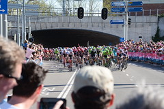 Giro d'Italia Arnhem 2016 016 (westgpottery) Tags: holland sport tom race cycling cyclist arnhem rosa pro giro poort maglia sonsbeek gelderland ditalia 2016 dumoulin zypse giroitaliaarnhem2016