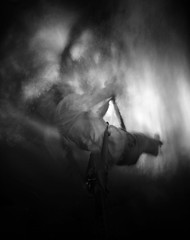 Relative Movement - The Rope Swing (wheehamx) Tags: motion movement rope swing pinhole relative