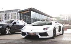 Sunny but cold (WuschelPuschel458) Tags: cars car photography automotive avi ave lp 700 lamborghini av sportscars supercars murcielago carspotting 7004 motorworld aventador