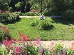 Olallieberry Inn Garden (tiny red warrior) Tags: california garden roadtrip bedandbreakfast cambria olallieberryinn