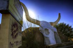 Longhorn Grill (L Geoffroy) Tags: arizona amado morning blue cafe restaurant western tucson southwest