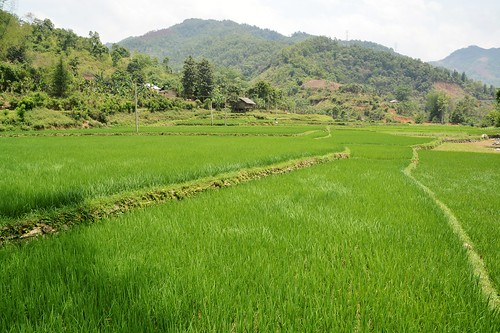 bao lac - vietnam 27