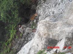 "Pengembaraan Sakuntala ank 26 Merbabu & Merapi 2014 • <a style=""font-size:0.8em;"" href=""http://www.flickr.com/photos/24767572@N00/27163247065/"" target=""_blank"">View on Flickr</a>"