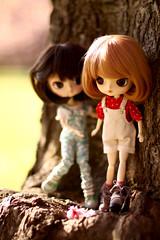 Mirabelle & Paprika (Blublue) Tags: blue red white tree cherry rouge doll dal bleu wig pullip luts ra arbre blanc cerisier sceaux poupe puki muw blublue
