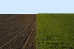 Felder Felder (www.online-photo-gallery.com) Tags: felder fields minimal landschaft landscape landwirtschaft farming lines