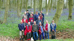 GOC Watton-at-Stone 011: Group shot (Peter O'Connor aka anemoneprojectors) Tags: wood england people plant man tree nature woodland person flora kodak outdoor wildlife group human scilla groupshot bluebell hertfordshire homosapiens liliaceae 2016 liliales goc hyacinthoides hyacinthoidesnonscripta asparagales asparagaceae wattonatstone gayoutdoorclub z981 scilloideae kodakeasysharez981 gochertfordshire hertfordshiregoc gocwattonatstone hazeldellwood