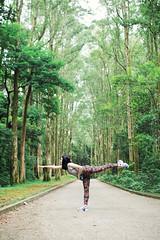 Stretching with Paperbark Trees (ellaasze) Tags: friends nature hongkong monkey healthy hiking wildlife paperbarktrees