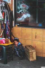 """""""Dog With Sunglasses"""" - Chasqui - Cotopaxi - Ecuador (TLMELO) Tags: plaza portrait woman man men chicken girl smile fun photo quito ecuador galinha mujer foto child mask market retrato joke mulher newyear mercado fantasy fantasia fancy batman joker actor praa rooster sorriso batgirl mueco bombing hombre anonovo equador piada galo baos mscara risada aoviejo ator coringa photobombing"""