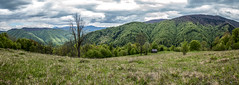 At the Edge of Meadow (Alex Demich) Tags: trees sky panorama mountain mountains tree green tourism nature grass clouds forest landscape grey cycling spring woods cloudy outdoor hiking hill meadow ukraine hills climbing hut carpathians slope slopes carpathian cloudsstormssunsetssunrises