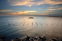 Oyster field  (Vincent_Ting) Tags: sunset sea sky reflection water clouds taiwan     truss fishingport   chaiyi  gorgeoussky   oysterfield   vincentting