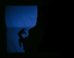 L (Santiago Forero Molano) Tags: she blue shadow girl silhouette azul teatro colombia bogota theater nipple underwear top ella sombra curly strap silueta brassiere undress ropainterior pezon blueandred crespa rizada sosten tiranta